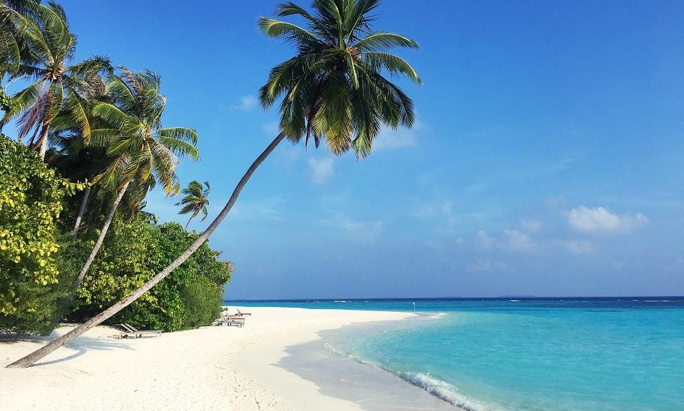 partir en vacances la conscience tranquille